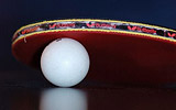 Table Tennis Shot Of The Day