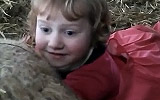 3 Year Old Lambing Time