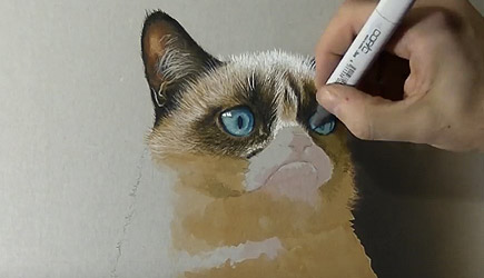 Marcello Barenghi - 3D Grumpy Cat Drawing
