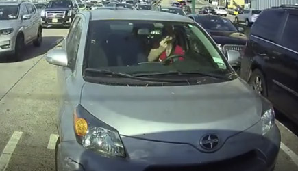 Pleasant NYC Woman Driver