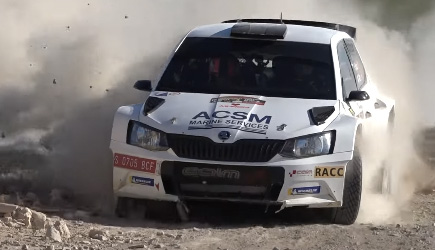 Rally Crash & Fails 2020 (32)